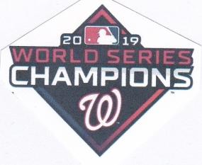 2019 WS logo